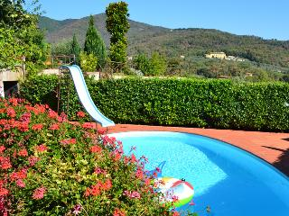 Villa la Poggerina Offers Amazing Views, Big Pool, BioGarden, and Wifi - Greve in Chianti vacation rentals