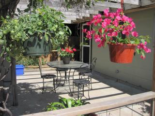 2/1 house enjoy S Lamar, Downtown and Zilker Park - Austin vacation rentals