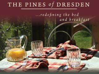 The Pines of Dresden Bed and Breakfast - Ohio vacation rentals