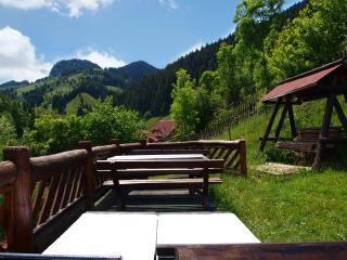 Bradul Chalet - Brasov vacation rentals