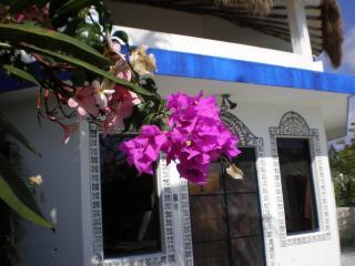 Book now $1300 Per Wk All Wks Ocean View Pool - Puerto Morelos vacation rentals