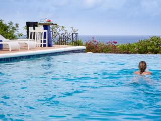 La Pergola : Mediterranean Style At It's Best, Sxm - Terres Basses vacation rentals