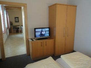 Spacious and cosy - Wieshof Appartement No. 6 - Salzburg Land vacation rentals
