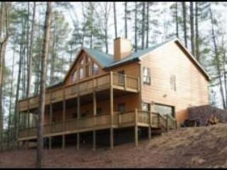 "Picture Perfect Cabin from the back yard - A ""Picture Perfect"" Cabin, Coosawattee Resort - Ellijay - rentals"