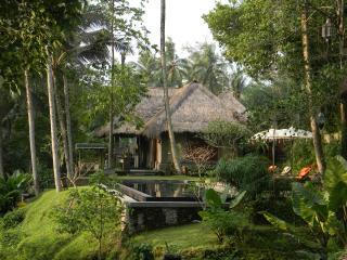 Beji Sari - Ubud vacation rentals