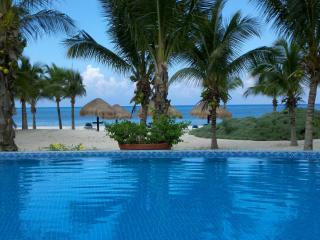 Cozumel Beach Front Condo on San Francisco Beach! - Cozumel vacation rentals