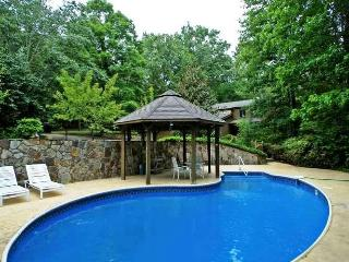 Blue Ridge 7 bedroom cabin swimming pool creek - Blue Ridge vacation rentals