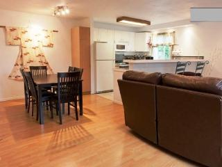 2br Quiet, private near Gaslamp, Convention, Zoo - Pacific Beach vacation rentals