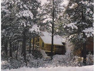 Family Home,Rocky Mountains,quite western town - Pagosa Springs vacation rentals