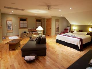 Asahi Loft of Harmony - Harmony vacation rentals