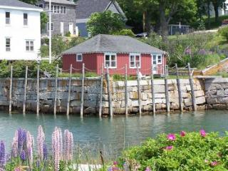 Harborside Cottage - Brooklin vacation rentals