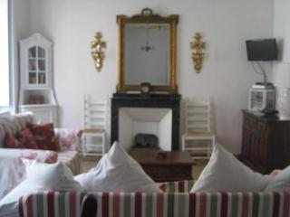 Pretty, Light & Airy Apartment, Heart of Limoux - Limoux vacation rentals