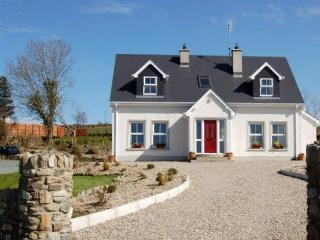 Mountain View - County Laois vacation rentals