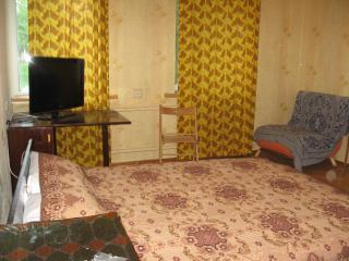 Apartment near the Rail Station in Kyiv/Kiev - Kiev vacation rentals