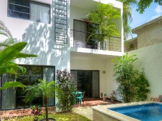 Casa Loro -Modern 3BR Villa-Just renovated-Perfect - Cozumel vacation rentals