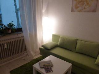 Vacation Apartment in Freiburg im Breisgau - 603 sqft, modern, comfortable, warm (# 2703) - Freiburg im Breisgau vacation rentals