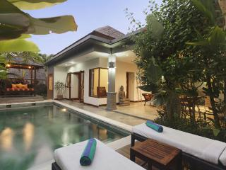 Villa Senang - PROMO MAY'15 2 Beds Villa in Canggu - Seminyak vacation rentals