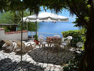 Villa Elza - Ohrid - Ohrid vacation rentals