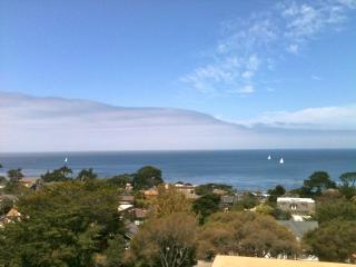 Outstanding Ocean Views-Fab Location-Beautiful ! - Pacific Grove vacation rentals