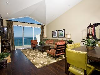 Cliff-top condo over-looking Pacific, Encinitas CA - Encinitas vacation rentals