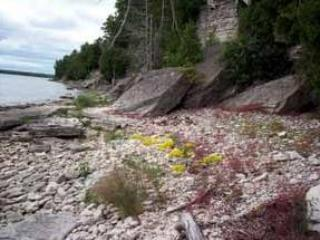 Door County Rentals-It's All About the Lakeshore - Baileys Harbor vacation rentals