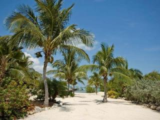 Pool, Dock, Sandy Beach, Privacy, Open Water - Summerland Key vacation rentals