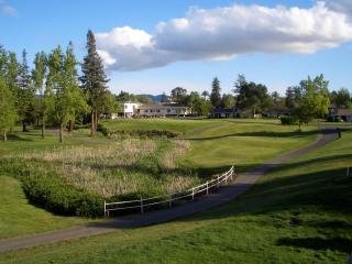 Napa Retreat - Best View in Silverado - Napa Valley vacation rentals