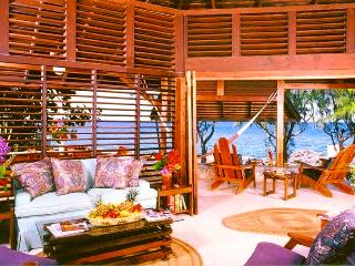 Stunning & Private Seafront Villa--June Special! - Negril vacation rentals