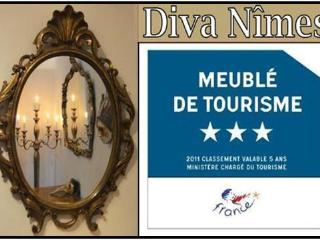 Diva-Nîmes - unique ambiance in a prime location - Nîmes vacation rentals