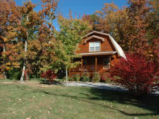 Lookout Mountain cottage, Chestnut Oak - Tennessee vacation rentals