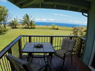Haiku Makai, excellent value, beautiful ocean view - Haiku vacation rentals