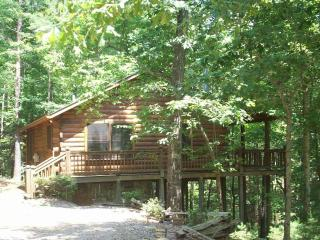 Bear Tracks Log Cabin w/ Private Hot Tub!!! - Blue Ridge vacation rentals
