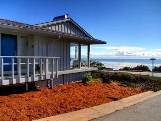 Oceanfront View, Pet, Fireplace Remodeled Kitchen - Pacific Grove vacation rentals