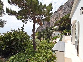 Villa Bouganvillea - Capri vacation rentals