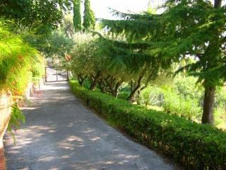 Villa Giulia - Maratea vacation rentals