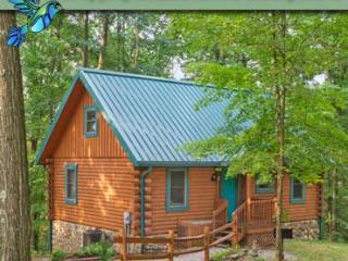 Hummingbird Hill Cabin 1 - Sugar Grove vacation rentals