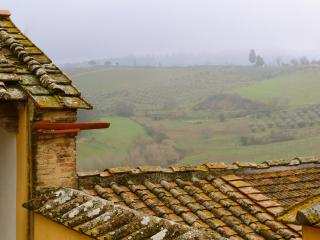 3 bedrooms with garden in the heart of Chianti - Malmantile vacation rentals