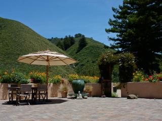 Little Gem on Heart Circle Mountain in Big Sur - Big Sur vacation rentals