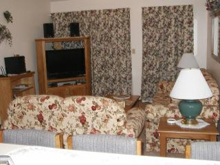 Two bedroom Condo one mile from Silver Dollar City - Missouri vacation rentals
