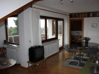 Vacation Apartment in Bodolz - 431 sqft, great view, balcony, WiFi (# 2783) - Bodolz vacation rentals