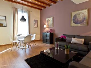 Paseo de Gracia Luxury - Barcelona vacation rentals
