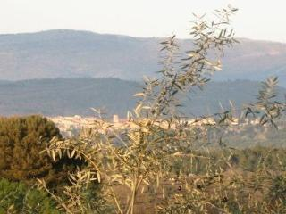 Luxurious Provence Cote d'Azur Vacation Villa - Callian vacation rentals