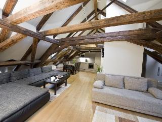 Spacious 160 sqm 3 Bedroom Loft Apartment With A/C - Prague vacation rentals