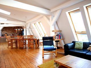 Attic Loft in Berlin, Germany - Potsdam vacation rentals