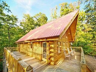 1 Bedroom with Tree House Hot Tub - Sevierville vacation rentals