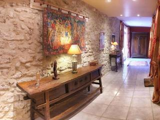 Luxurious 17 Century French Villa in The Languedoc - Creissan vacation rentals