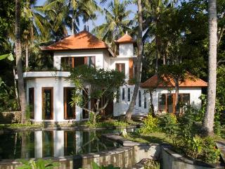 HUGE POOL AC 3 BED VILLA SEA-RICEFIELDS-MOUNTAINS - Karangasem vacation rentals