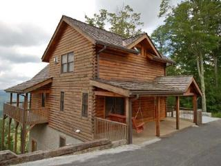 Black Bear Lodge at Scenic Wolf Resort - Asheville vacation rentals