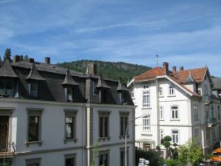 Vacation Apartment in Baden Baden - 592 sqft, modern, comfortable, warm (# 2796) - Waldbronn vacation rentals