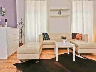 100sqm app in the historical center of Salzburg - Salzburg vacation rentals